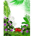 tropical jungle background vector image