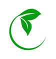 circular green leaf icon vector image vector image