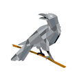 Crow Perching Looking Back Low Polygon vector image