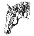 decorative portrait of horse vector image vector image