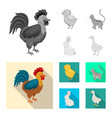 isolated object breeding and kitchen symbol vector image vector image