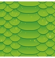 Snake skin texture Seamless pattern green vector image vector image