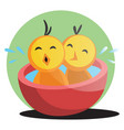 two cute yellow chick bathing web on white vector image vector image