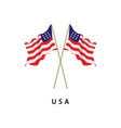 usa flag template design vector image