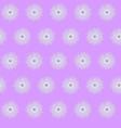 violet purple flower cornflower isolated on white vector image