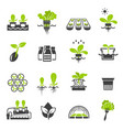 collection flat icons - hydroponic gardening vector image