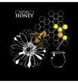 Design elements for honey design vector image
