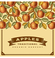 Retro apple harvest card vector image vector image