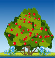 year glade and bush with berry vector image vector image