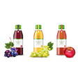 apple and grapes juices set realistic vector image vector image