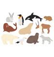 cute arctic antarctica animals and birds set