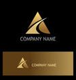 gold triangle loop company logo vector image