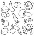 hand draw of vegetable doodles vector image vector image