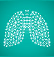 human lungs isolated on a green background vector image vector image