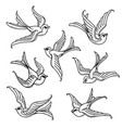 set of flying bluebirds free birdssymbol of hope vector image vector image