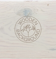 White wood texture background close up vector image