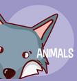 wolf animal cartoon vector image