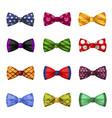 collection elegant bow ties trendy neckties vector image vector image