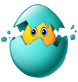 cute easter chicks in egg shell vector image vector image