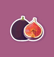 fresh juicy fig icon tasty ripe fruit berry vector image