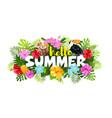 hello summer composition vector image