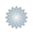 lotus plant symbol vector image vector image