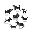 origami dogs collection vector image vector image