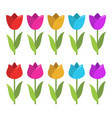 set colorful tulips vector image vector image