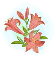 beautiful gift card with orange lilies vector image vector image