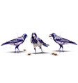 crows watercolor isolated birds on white vector image vector image