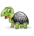 Cute Smile Turtle cartoon vector image vector image