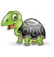 Cute Smile Turtle cartoon vector image vector image