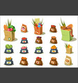 flat set of farm products natural food vector image vector image