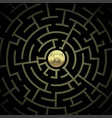 gold bitcoin in a complex financial labyrinth vector image vector image