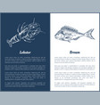lobster and bream fish posters vector image vector image
