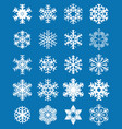 set different white snowflakes vector image vector image