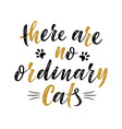 there are no ordinary cats handwritten sign vector image vector image