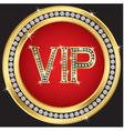 VIP vector image vector image