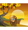 A brown bear beside a big tree near the cliff vector image vector image