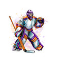 abstract hockey goalkeeper from splash of vector image vector image