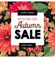 autumn sale tropical banner seasonal promotion vector image vector image