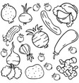 doodle of vegetable style collection vector image vector image