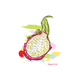 dragon fruit with colorful splashes vector image vector image