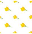 flower - ylang-ylang cananga seamless pattern vector image vector image