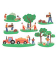 people picking fruits and berries flat vector image