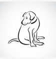 sitting doglabrador retriever on white vector image