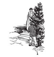 a man with chopped freshly pine-tree vintage vector image vector image
