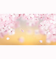 beautiful delicate background with blossoming vector image vector image