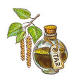birch coal tar in bottle with twig watercolor vector image vector image