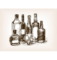 bottles alcohol drinks hand drawn sketch vector image